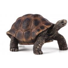 Mojo Animal Planet Гигантская черепаха